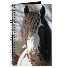 Gypsy Horse Journal