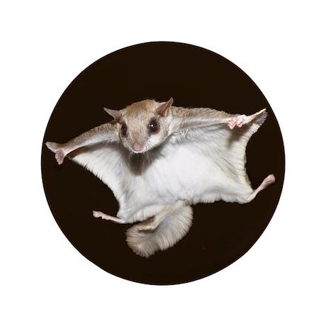 "Flying Squirrel 3.5"" Button"