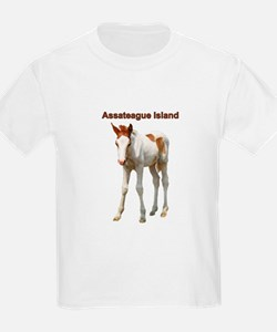 Assateague Island Foal T-Shirt