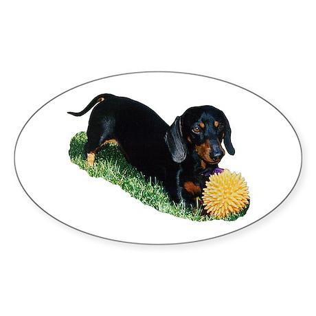 Ollie Doxie (Dachshund) Sticker (Oval 10 pk)