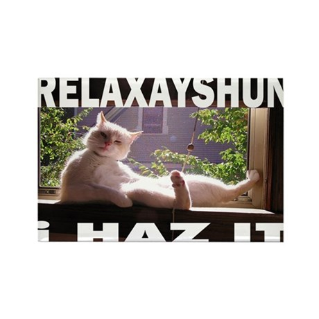 relaxation cat Rectangle Magnet