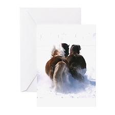 Unique Icelandic pony Greeting Cards (Pk of 20)
