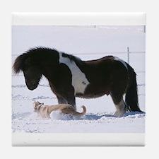 Unique Icelandic horses Tile Coaster