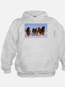 Funny Icelandic horse Hoodie