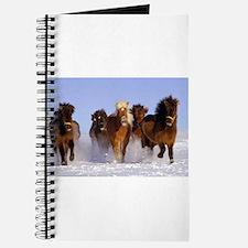 Cute Bay horse Journal
