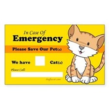 Rescue My Cats Rectangle Stickers