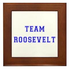 Team Roosevelt Framed Tile
