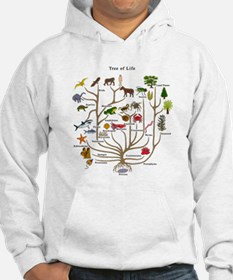 Tree of Life Jumper Hoody
