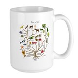 Evolution Large Mugs (15 oz)