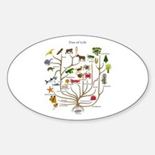 Tree of Life Oval Decal