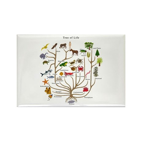 Tree of Life Rectangle Magnet (10 pack)