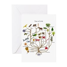 Tree of Life Greeting Cards (Pk of 20)