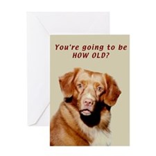 Toller Birthday Card