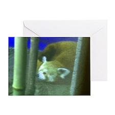 red panda 2 Greeting Card