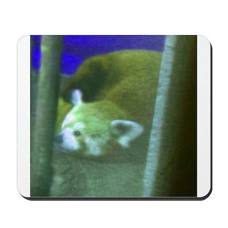 red panda 2 Mousepad