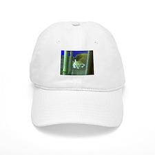 red panda 2 Baseball Cap