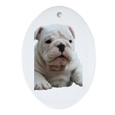 Bulldog 1 Oval Ornament
