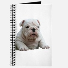 Bulldog 1 Journal
