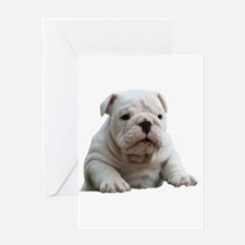 Bulldog 1 Greeting Card