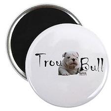 Trou Bull Magnet
