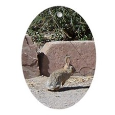 rabbit Oval Ornament