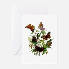 BUTTERFLIES & PURPLE THISTLE Greeting Cards (P