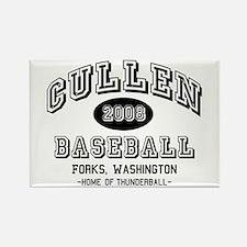 Cullen Baseball 2008 Rectangle Magnet