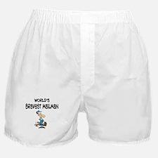 Humorous Mailman Boxer Shorts