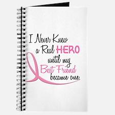 Never Knew A Hero 3 Best Friend BC Journal