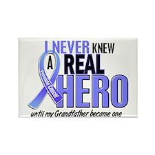 Never Knew A Hero 2 LT BLUE (Grandfather) Rectangl