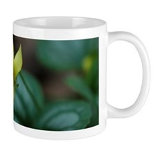 Yellow Violet Flower Song Mug