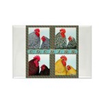 Cochins! Rectangle Magnet (10 pack)