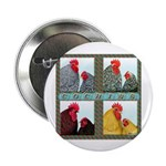 "Cochins! 2.25"" Button (100 pack)"