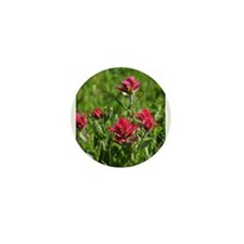 Indian Paintbrush Flower Song Mini Button