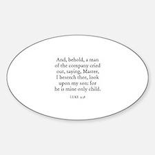 LUKE 9:38 Oval Decal