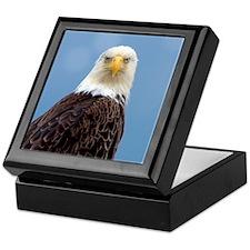 Keepsake Box - Bald Eagle