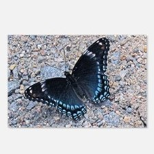 BLUE SWALLOWTAIL Postcards (Package of 8)