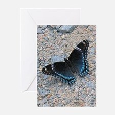 BLUE SWALLOWTAIL Greeting Cards (Pk of 10)