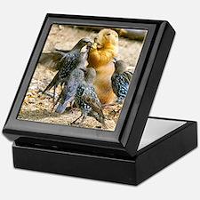 Cute Funny bird Keepsake Box