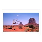 <b>Monument Valley Struggle</b><br Postcards (Pack