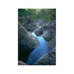 Dead Horse Creek Rectangle Magnet (100 pack)