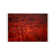 Bryce Canyon Flames Rectangle Magnet