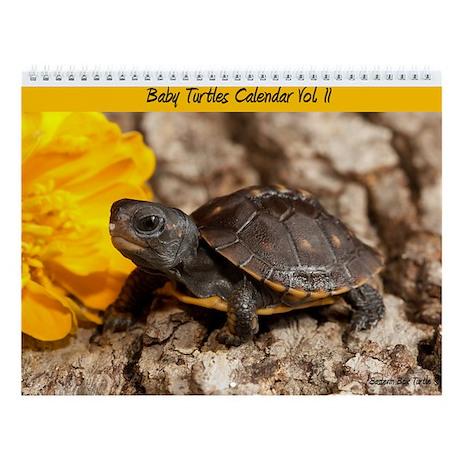 Baby Turtle Calendar