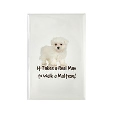 Real Men Walk Maltese Rectangle Magnet