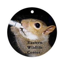 EWC eating sqrl Ornament (Round)