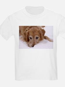 Winter Golden Retriever T-Shirt
