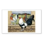 Duckwing Bantam Chickens Rectangle Sticker