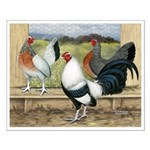 Duckwing Bantam Chickens Small Poster