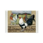 Duckwing Bantam Chickens Rectangle Magnet