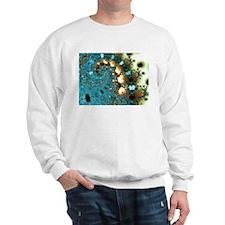 """Distant Lands"" Fractal Art Sweatshirt"